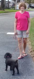 Susan walking Bonnie in Tampa, FL on Christmas Day of 2015. Photo taken by Charles Oropallo.